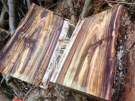 woodworking hawaii hawaiian koa wood gifts
