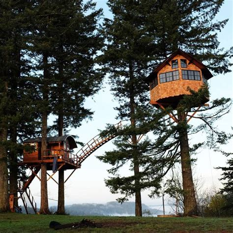 Small Country Homes man builds amazing treehouse home with its own skatepark