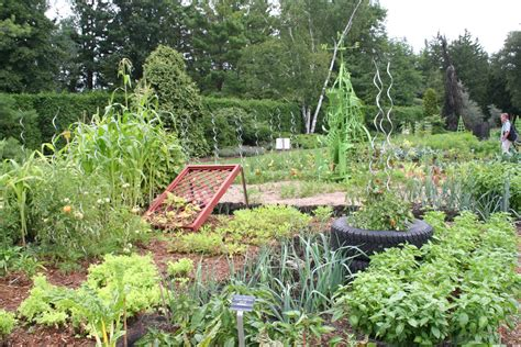 history of vegetable gardening 75 years of horticultural excellence in niagara falls