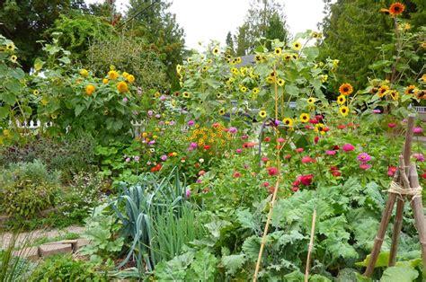 permaculture garden layout best 20 permaculture garden layout design design