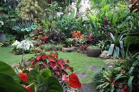 backyard photography ideas tropical backyard ideas marceladick