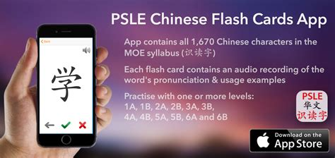 app to make flash cards psle flash cards iphone app salary sg
