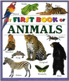 picture books about pets books harris children s author