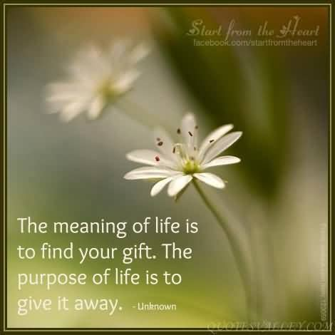 find the gift the meaning of is to find your gift the purpose of