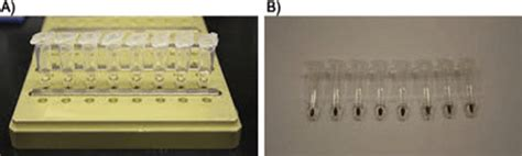 spri bead size selection 1 size selection of restriction fragments using solid