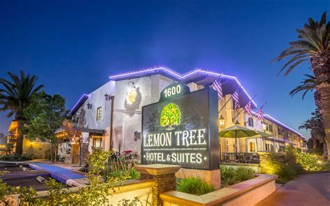 hotel tree lemon tree hotel suites anaheim orange county 2017