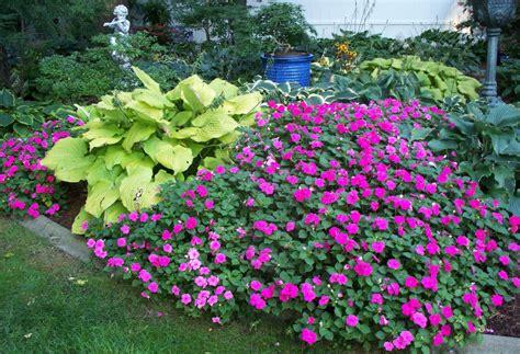 flowers shade garden shade garden gardening