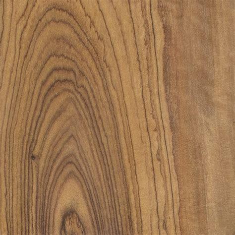 olive wood olive the wood database lumber identification hardwood