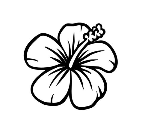 hibiscus flower design cliparts co