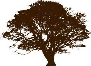 tree brown brown wedding tree clip at clker vector clip