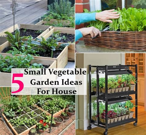 how to make home vegetable garden 5 interesting easy and small vegetable garden ideas for