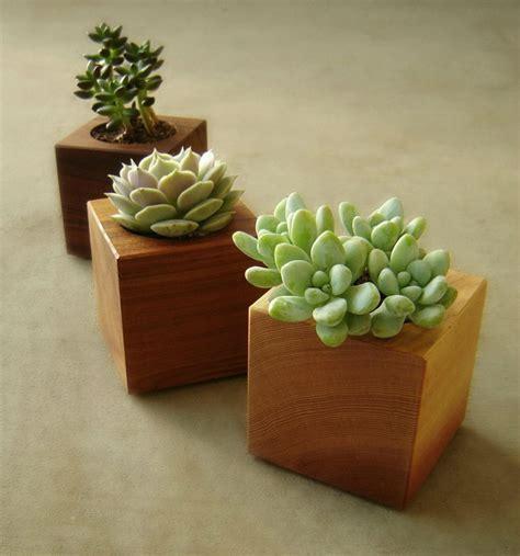wooden succulent planter wood succulent planter modern succulent pot gardener gift