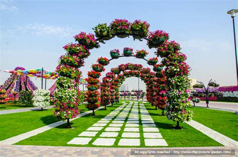 world best flower garden dubai miracle garden the most beautiful and largest