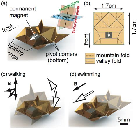 origami robot see the tiny origami robot that s going viral folds
