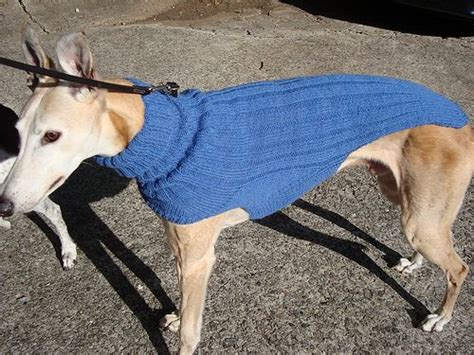 greyhound knitting pattern free 17 best images about for s greyhound on