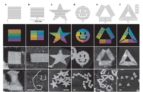 dna origami applications others 10 박재형 openwetware