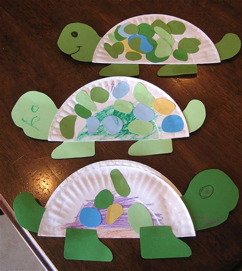 preschool craft projects turtle flickr photo