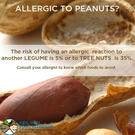 allergic reaction to tree food allergies and cross reactivity