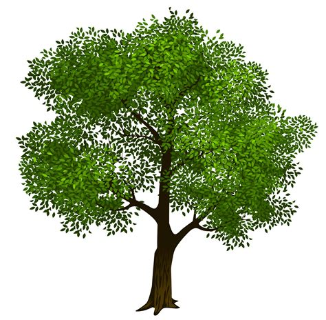 trees clipart tree clip for free clipart images cliparting