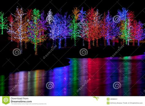tree wrapped in lights trees wrapped in led lights for stock image