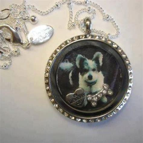 origami owl origami owl put a picture inside the locket in memory