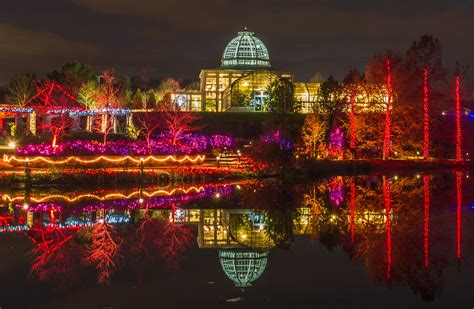 va lights richmond draws crowds with garden of lights wvtf