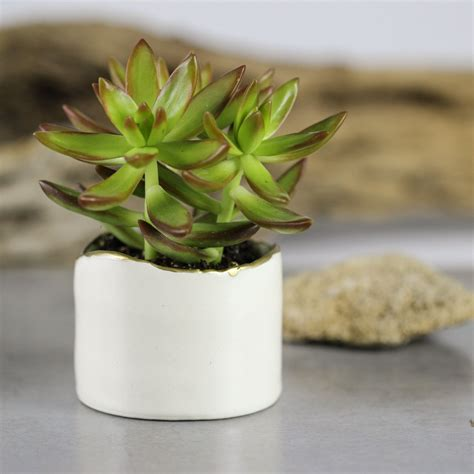 modern ceramic planter white modern ceramic planter succulent planter ceramic plant