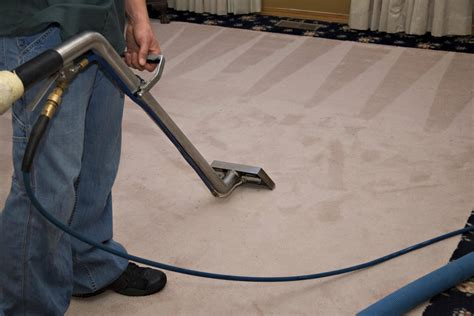 Carpet Ckeaner by Los Angeles Carpet Cleaning Steam Green Carpet Cleaning
