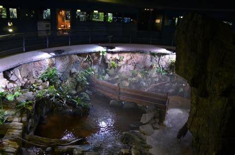 photo1 jpg picture of aquarium tropical de la porte doree tripadvisor