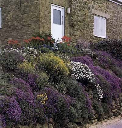 rock wall garden ideas wall rock garden ideas wall rock garden ideas