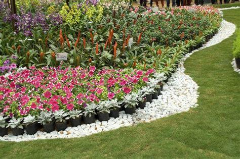 flowers for garden borders 10 small flower garden ideas to build a serene backyard