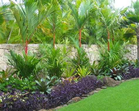 tropical landscaping ideas tropical landscaping ideas houston landscaping