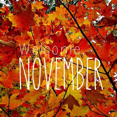 for november this grand adventure chelsa bea welcome november