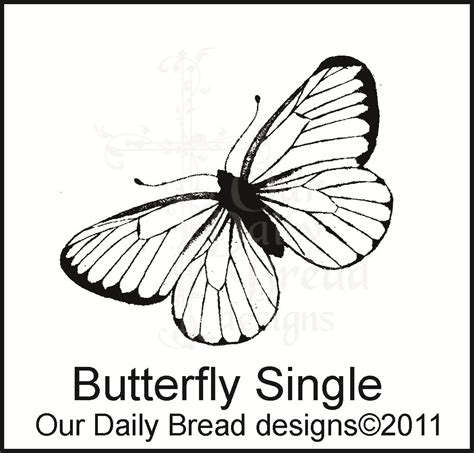butterfly rubber sts butterfly st
