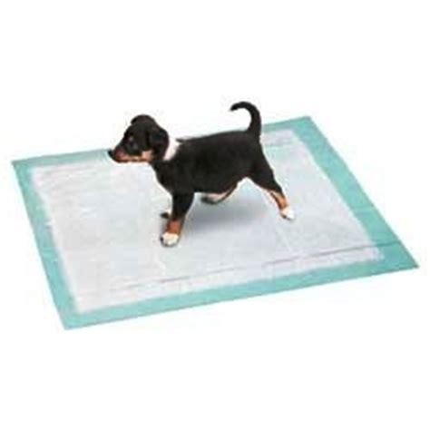 apprendre la propret 233 au chiot avec le tapis 233 ducateur