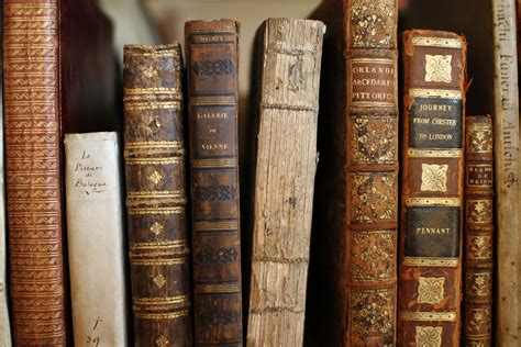 vintage picture books vintage book store 01 some book in light