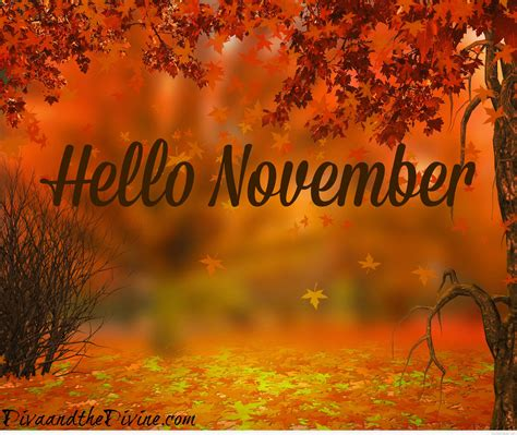 for november hello november quotes pictures and wallpapers