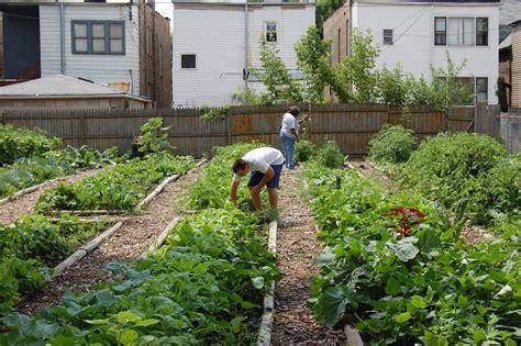 how to make home vegetable garden simple diy backyard vegetable garden home design with