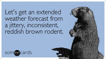 groundhog day weather report humor and chaos
