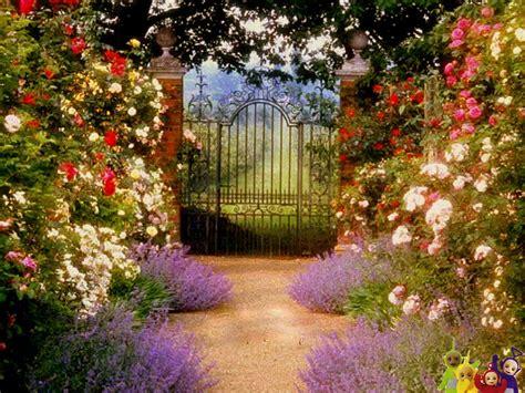 garden gate flowers the commonty beyond the garden gate