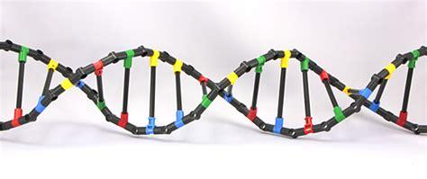 Technic Delicatessen: Lego Technic DNA