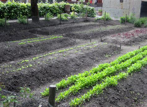 raised rows vegetable garden better for planting square foot gardening vs row