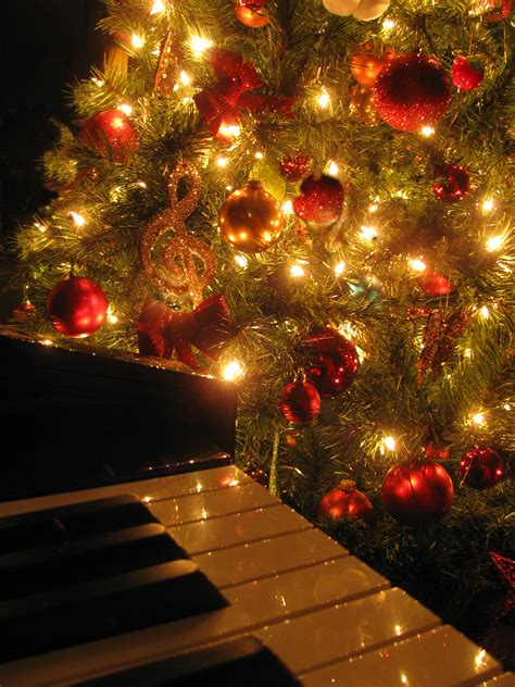 musical lights for tree photo album best