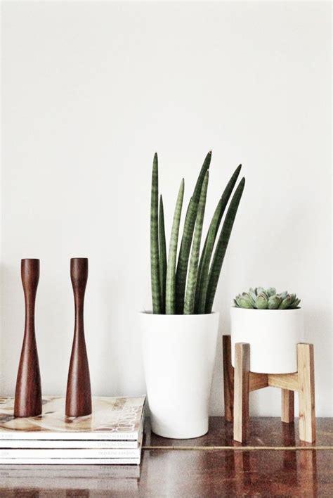 modern plants indoor mid century indoor planters
