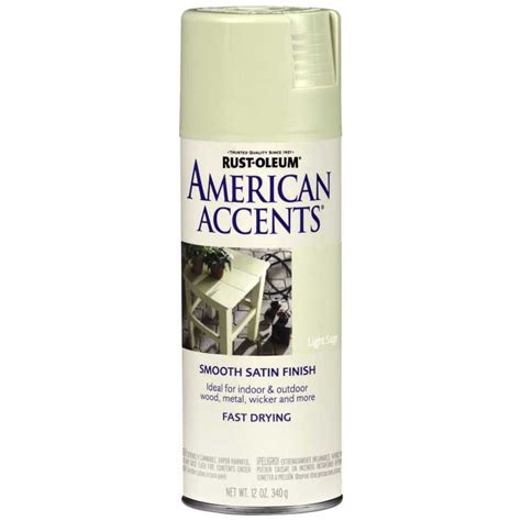 spray painter health check rust oleum 7937830 american accents light spray paint
