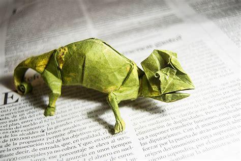 origami chameleon origami chameleon bored panda