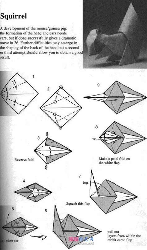 origami squirrel diagram diagram template category page 237 gridgit