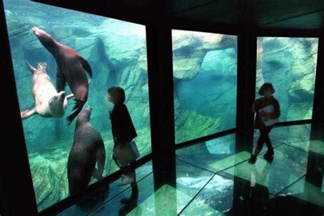 nausicaa aquarium de boulogne sur mer h 244 tel des argousiers sur la c 244 te d opale 224 ambleteuse