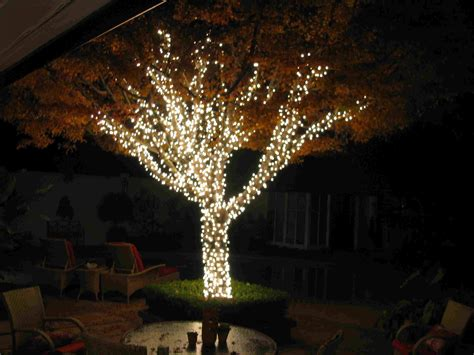 tree lights 15 best garden lighting ideas 2017 uk