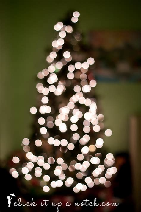 tree lights with different settings tree light bokeh click it up a notch